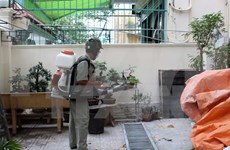 HCM City: Nine pregnant women contract Zika virus