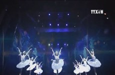 The Nutcracker to be staged in Ho Chi Minh City