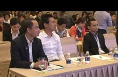 Tourism information app launched in Da Nang
