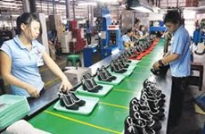Leather, footwear sector forecasts 18 bln USD in export earnings