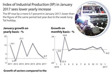 Index of Industrial Production (IIP) in January sees low increase