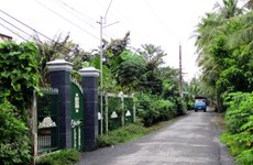 HCM City residents make streets green and clean