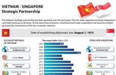 Vietnam – Singapore Strategic Partnership