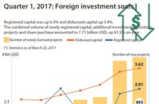 Quarter 1, 2017: Foreign investment soars