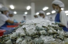 Shrimp exports expected to reach 5 bln USD by 2020
