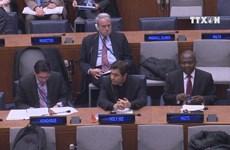 Vietnam attends UN talks on nuclear weapons ban