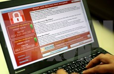 Vietnam keeps eyes peeled for WannaCry ransomware