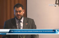 Tax, customs policies remain roadblocks to enterprises