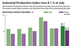 Industrial Production Index rises 8.1% in July