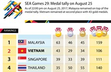 SEA Games 29 medal tally on August 25