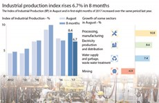 Industrial production index rises 6.7 percent in 8 months