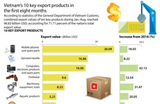 Vietnam's 10 key export products in first eight months