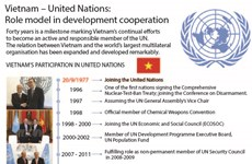 Vietnam – United Nations: Role model in development cooperation