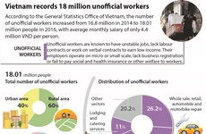 Vietnam records 18 million unofficial workers