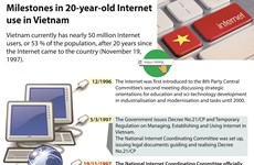 Milestones in 20-year-old Internet use in Vietnam