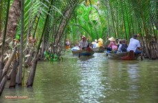 Coconut fairyland strives to attract tourists