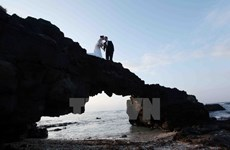 Alluring attractions in Ly Son island district