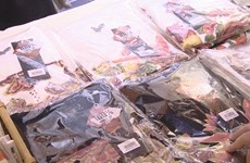 Young artist bring folk painting to life