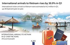 International arrivals to Vietnam rises by 30.9% in Q1
