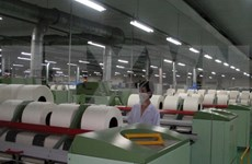 Vietnamese labourers struggle amid Industrial Revolution 4.0