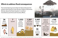 Efforts to address flood consequences