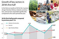 Growth of key sectors in 2018's first half