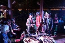 Ritual welcomes ripe avocado season in Dak Nong