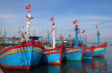 Quang Nam province short of seamen