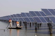Renewable energy seeks investment to thrive
