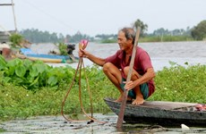 Mekong Delta life in flooding season