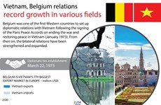Vietnam, Belgium relations record growth in various fields