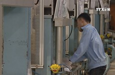 Bright picture forecast for Vietnam's economic growth