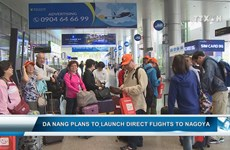 Da Nang plans to launch direct flights to Nagoya