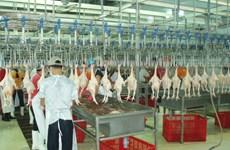 Animal husbandry sector urged to access bigger markets