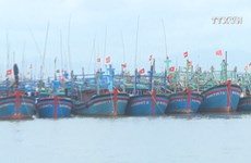 Efforts against illegal fishing