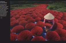 Vietnamese photos get 'honourable mention' at international contest