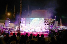 Wild sunflower festival underway in Gia Lai
