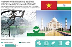 Vietnam-India relationship develops effectively