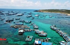 Phu Quy island tourism soars