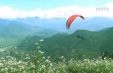 Muong Lo Festival takes place in Yen Bai province