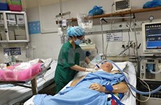 Vietnamese hospitals to remove bottlenecks to lure foreign patients