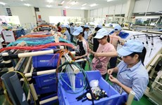 Vietnam's economic growth has yet to reach strategic goal: expert
