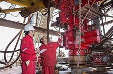 Bien Dong 01 – petroleum industry's imprint in 2019