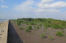 EU and France help Vietnam towards a green future