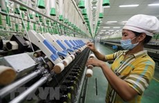Vietnam's GDP to grow 2-3 percent this year: former GSO director