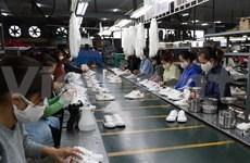 Domestic enterprises record upbeat exports despite pandemic