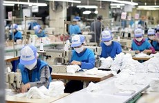 Domestic labour market shows rosy signs in Q4