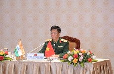 Vietnam, India boost defence collaboration