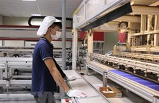 Outstanding advantages make Vietnam attractive to investors: EIU