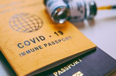 'Vaccine passport' pilot to open up recovery opportunities for tourism: experts